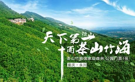 重慶永川茶山竹海景區門票1張-成人票