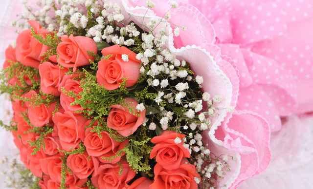 会馆22支粉色玫瑰配加满天星,可随机赠送一只钻熊1次-那时花开花图片