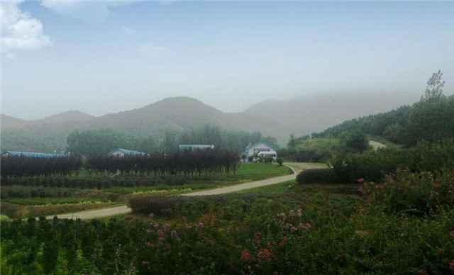 藏马山国际旅游度假区团购 美团网