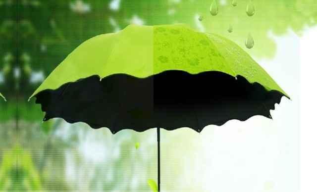 仙桂太阳伞
