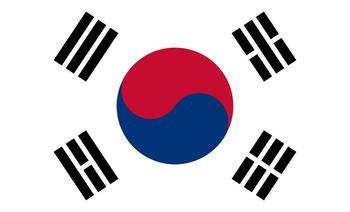 大长今水边韩国料理(彝人古镇店)-美团