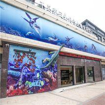 千岛湖三叠纪古生物化石馆-美团