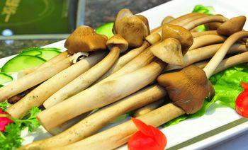 菇色菇香养生菌类火锅-美团