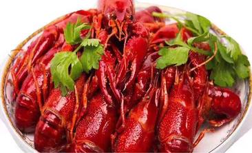 红胖胖龙虾工坊-美团