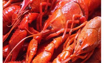 山里虾霸王-美团