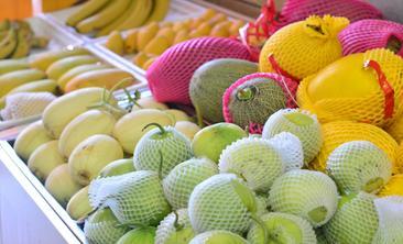 小白蔬果-美团
