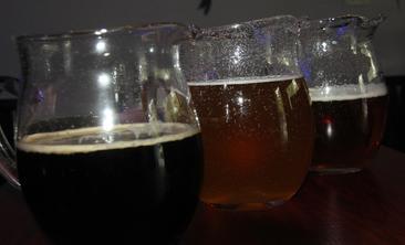 雪鹿精酿啤酒屋-美团