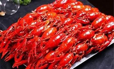 亿品香龙虾-美团