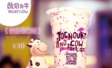 酸奶与牛-美团
