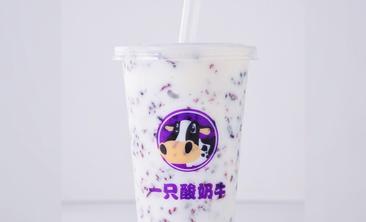 一只酸奶牛-美团