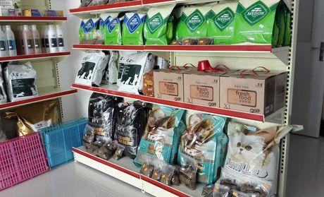 【北京派多格宠物店团购】派多格宠物店大型宠物洗澡