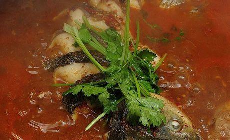 鱼满锅灶台鱼