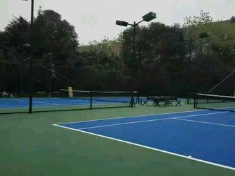 未来之星网球俱乐部(逸都路店)