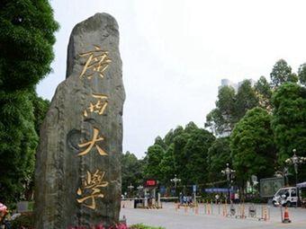 广西大学(校本部)
