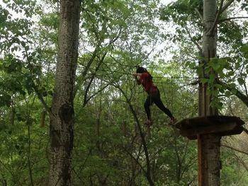 【朝阳公园】中级快乐猩猩树上穿越票-成人票-美团