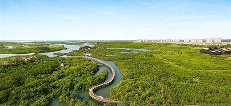 【澄迈县】富力红树湾湿地公园门票+皮划艇(双人票)-美团