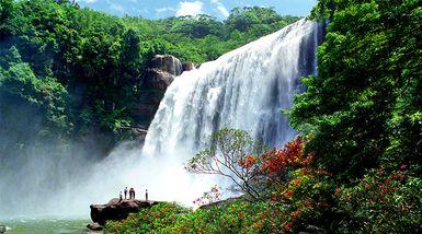 【全国】赤水大瀑布门票+往返观光车+燕子岩国家森林公园门票(成人票)-美团