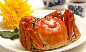 【北京】固城湖螃蟹-美团