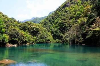 【金华出发】牛头山国家森林公园、延福寺1日跟团游*险峻奇峰,感受自然美-美团