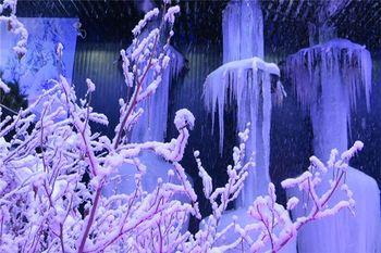 【钟村】越美冰雪大世界门票(双人票)-美团