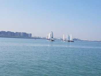 【五缘湾】五缘通帆船出海体验船票4人起订(团体票)-美团