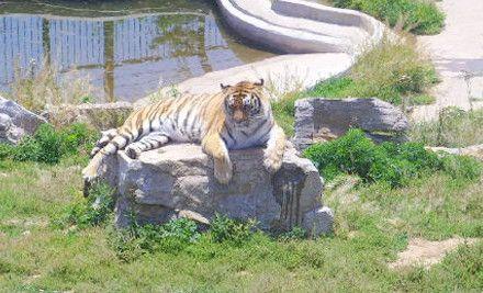 南野生动物世界位于中国济南市东南的跑马岭上