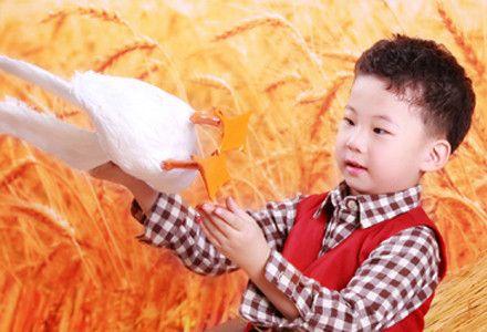 格林童趣专业儿童摄影连锁机构儿童写真套系,通达路与成才路交汇