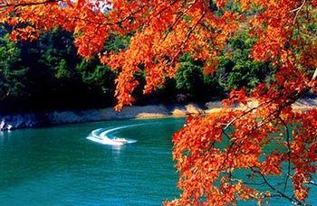 【广州出发】流溪河国家森林公园纯玩1日跟团游*赏北回归线上绿色明珠-美团