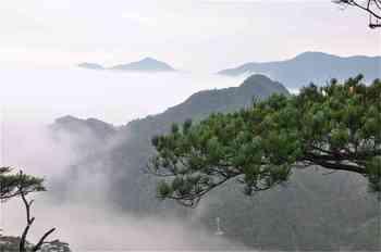 【乳源瑶族自治县】南岭国家森林公园-美团