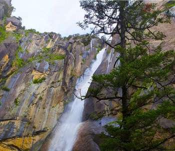 【拉萨出发】措木及日景区、雅鲁藏布大峡谷、卡定沟等纯玩3日跟团游*游览醉美林芝-美团