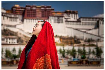 【拉萨出发】布达拉宫、雅鲁藏布大峡谷、纳木错等纯玩9日跟团游*西藏全景8晚9天游-美团