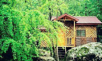 【西安出发】红河谷森林公园、红河谷森林公园纯玩2日跟团游*赠一日旅游意外险-美团