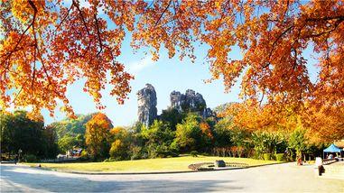 【七星公园】七星景区动物园门票(非桂林籍游客专用)(成人票)-美团