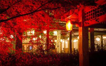 【鲁山县】昭平湖森林温泉门票(成人票)-美团