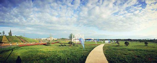 【洛带古镇】特惠蔚然花海风筝节清明踏青预售门票+风筝-成人票-美团