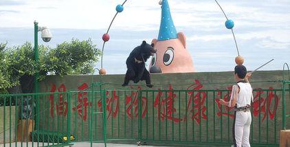 【石老人海水浴场商圈】东方熊牧场-美团