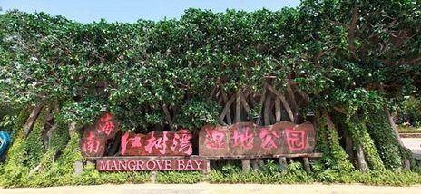 【澄迈老城镇】富力红树湾湿地公园皮划艇(双人票)-美团