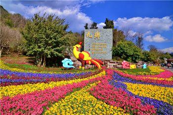 【宜良县】九乡风景名胜区-成人票-美团