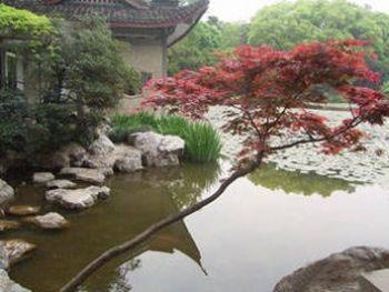【桐庐县】琴溪香谷(成人票)-美团