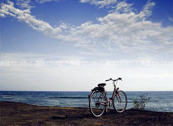 【深圳出发】西冲沙滩、西冲海滩、西冲沙滩烧烤等纯玩1日跟团游*烧烤,野战,单车-美团