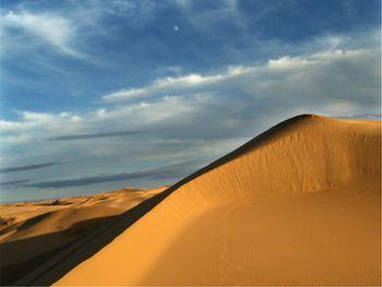 【呼和浩特出发】库布其沙漠1日跟团游*在浩瀚沙漠中尽情撒欢-美团