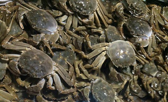 【徐记.蟹嘎嘎辣螃蟹】3.0大闸蟹1份,抄报免费手美食中国提供图片