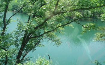 【青岛出发】北九水风景区纯玩1日跟团游*九水十八潭 北方九寨-美团