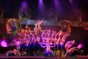【沙湾】勐巴拉娜西艺术宫歌舞秀18:30场VIP票(成人票)-美团