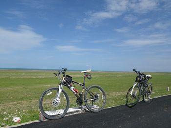 【西宁出发】青海湖、日月山、金银滩草原纯玩1日跟团游*骑行体验,赠送凤凰山-美团