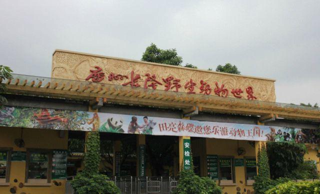 【【美团直通车】广州长隆野生动物园一日游】【美团直通车】广州长隆