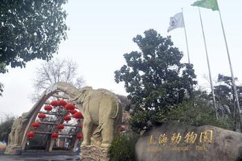 【虹桥火车站/机场】上海动物园-美团