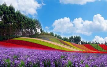 【长泰县】十里蓝山景区门票成人票-美团
