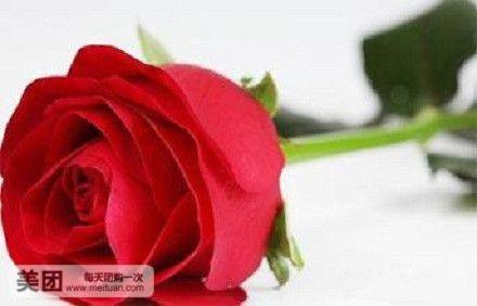 小计 玫瑰花