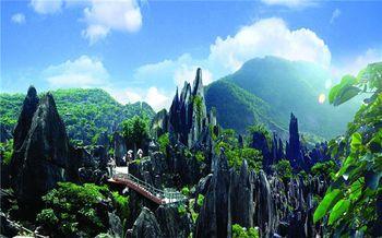 【八步区】玉石林风景区门票(成人票)-美团
